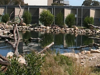 AMWRRO main pond