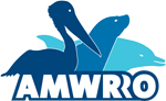 Australian Marine Wildlife Research & Rescue Organisation – AMWRRO