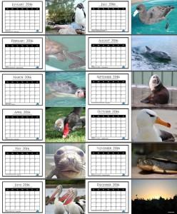 AMWRRO 2016 Rescue Calendar
