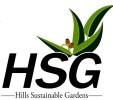 hsg-custom